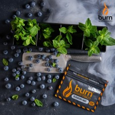 Табак для кальяна Burn 200 гр Blueberry Mint